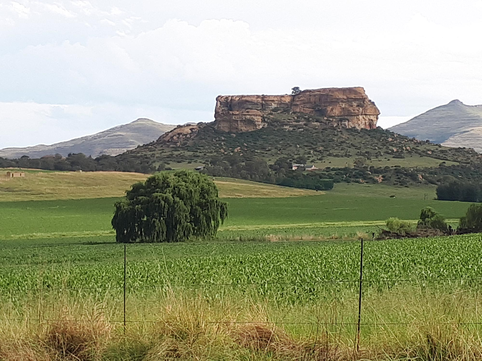 Lush Festival has a spacious new home in Clarens